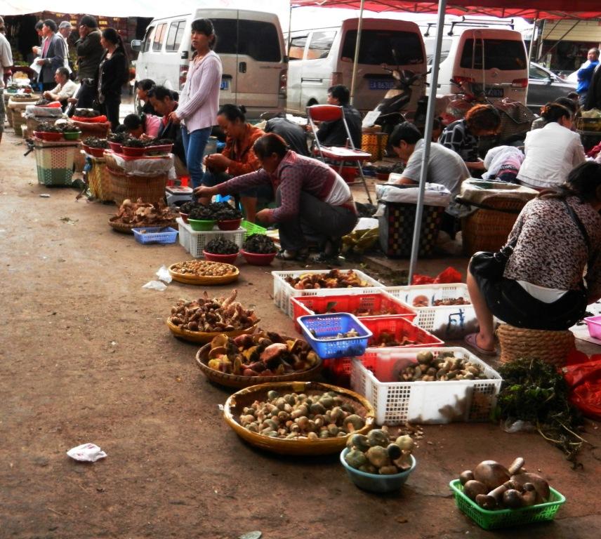 mushroom market small