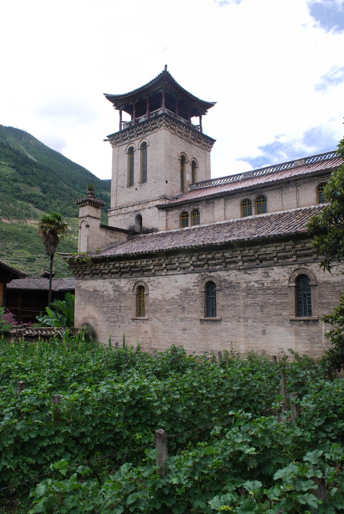 Township government Cabernet vineyards planted outside of Cizhong' s church