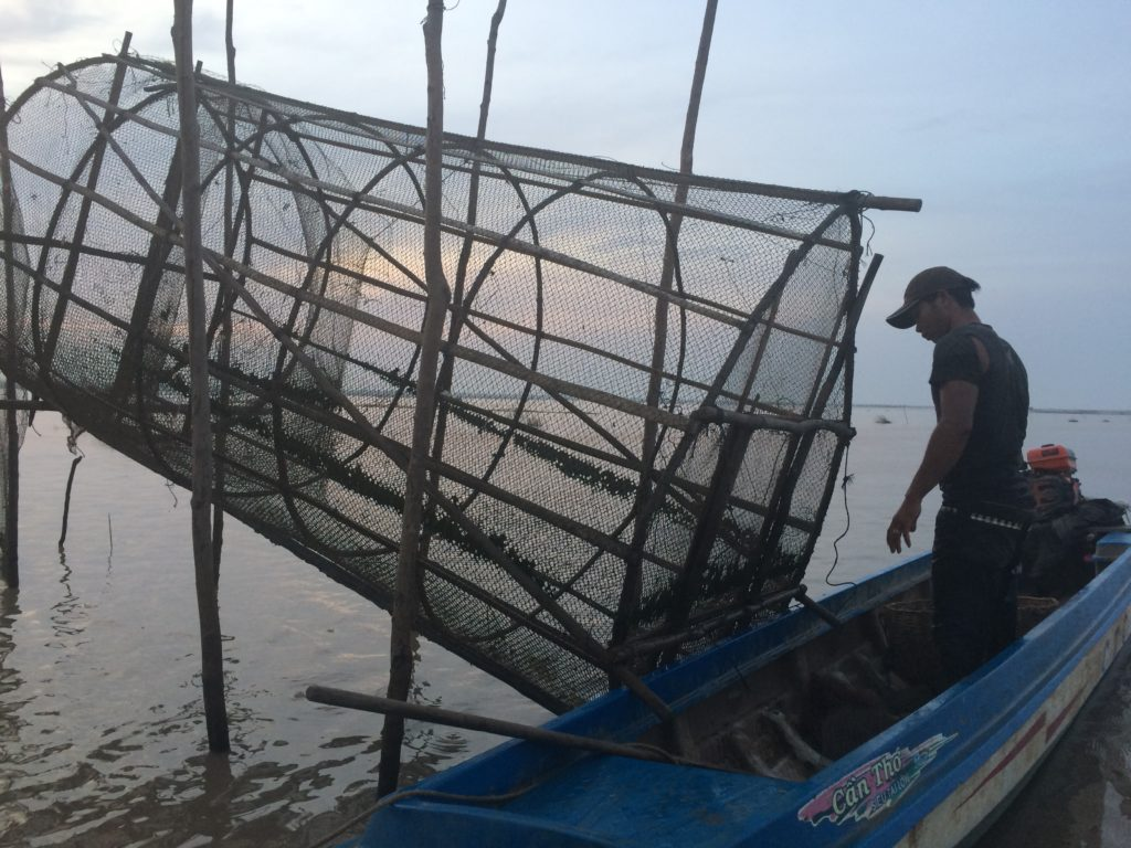 Fisherman checks his nets on Cambodia's Tonle Sap