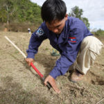 FSD deminer Mr Dasone Sitthipone working with a detector at a UXO clearance area, begins excavating an unidentified object. Photo: Australia DFAT